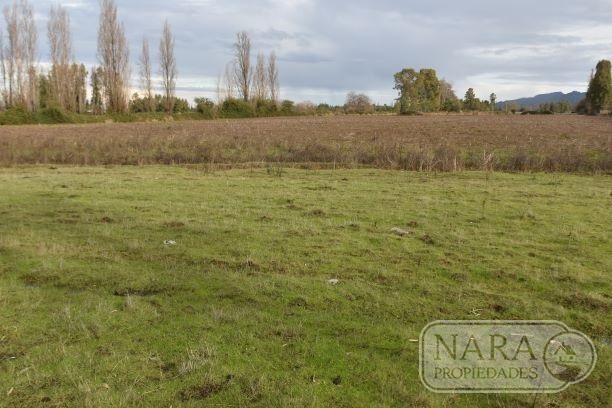 Se vende parcela agrícola 7 ha, con 4,5 acciones de agua, San Javier