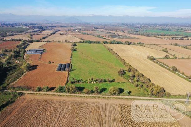 Se vende excelente parcela agrícola 10,45 ha en Pelarco