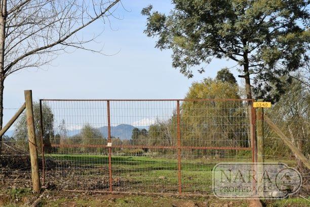 Vendo parcela de 8.000 m2,Santa Margarita Pelarco