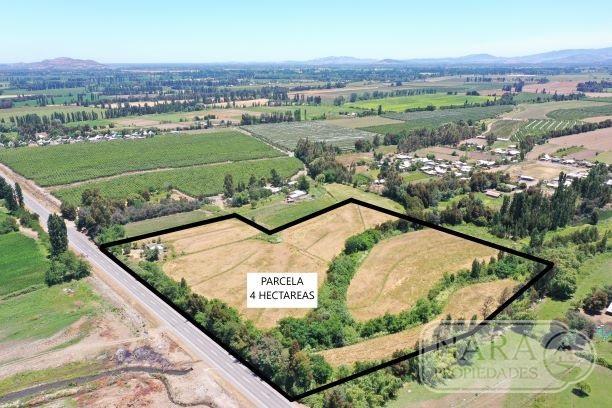 Se vende parcela agrícola 4 ha.3,5 acc. de agua,San Javier