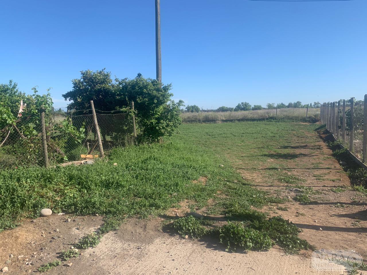 Se vende terreno urbano 544,60 m2 en Santa Rita, Pelarco